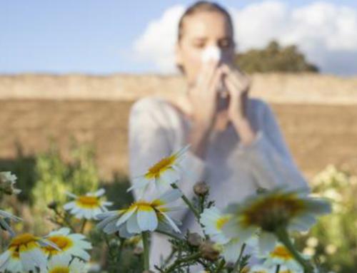 Chiropractic Care Battles Seasonal Allergies